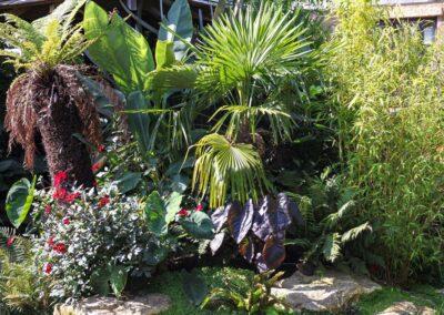 Tropical Style Planting Rock Garden