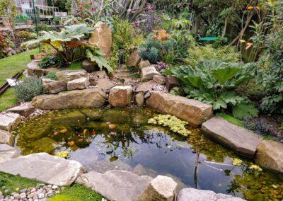 Macclesfield pond